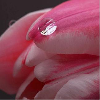 Rosa rosfotoskulptur fotoskulptur nyckelring