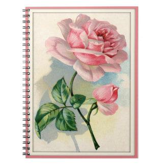 Rosa rosor för skönhet, grå anteckningsbok
