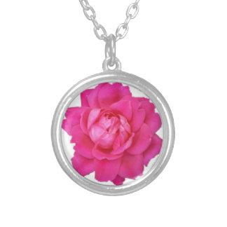 Rosa rosrundahalsband silverpläterat halsband