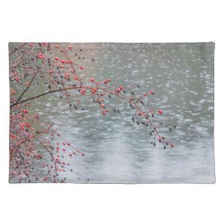 Rosa träd för vild som hänger ett damm   Seabeck, Bordstablett