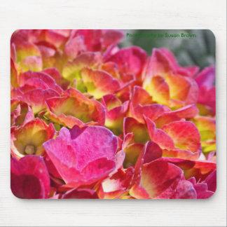 Rosa vanlig hortensia Mousepad Musmatta