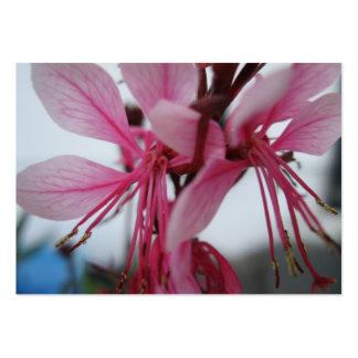 Rosan blommar handelkortet set av breda visitkort
