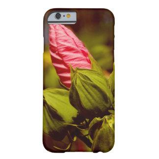 Rosor blommar kulafotoiPhone/iPadfodral Barely There iPhone 6 Skal