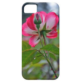 Rosor och vit ros iPhone 5 fodral