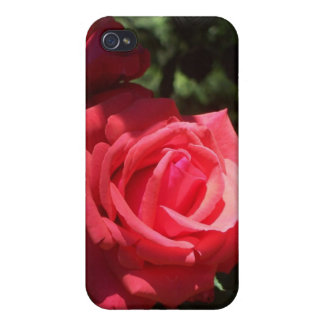 RoSpeckfodral iPhone 4 Skydd