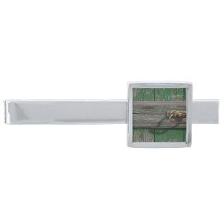 Rostigt dörrhandtag på grön dörr silverpläterad slipsnål