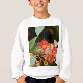 Rött blommargummi (den Corymbia ficifoliaen) T Shirts