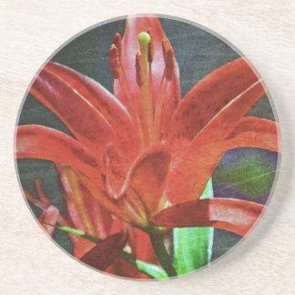 Rött som Lilja-Textureras av Shirley Taylor Underlägg Sandsten