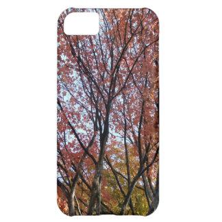 Rött träd iPhone 5C fodral