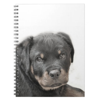 Rottweiler hund anteckningsbok med spiral