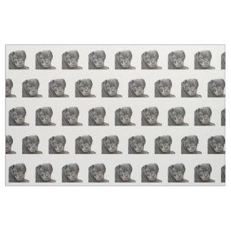 Rottweiler hundtyg