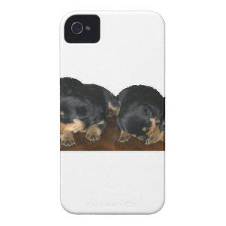 Rottweiler valpar iPhone 4 skal