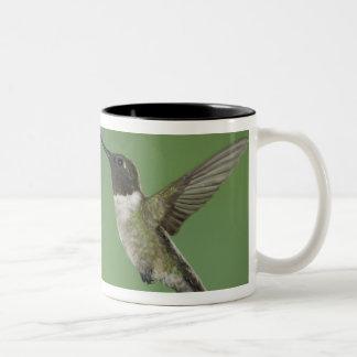 Ruby-throated Hummingbird, Archilochus Två-Tonad Mugg