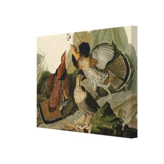 Ruffed Grouse av John Audubon Canvastryck
