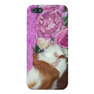 Rupert och ro - försökskanin iPhone 5 hud