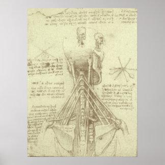 Ryggrads- kolonn för människaanatomi av Leonardo Poster