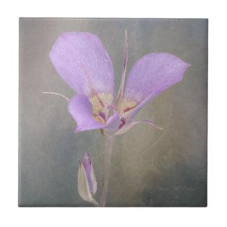 SagebrushMariposa lilja Kakelplatta