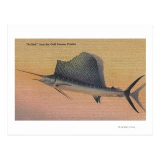 Sailfishen från bukt strömmer, FloridaFlorida Vykort