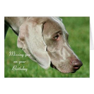 Saknad dig på ditt födelsedagWeimaraner kort