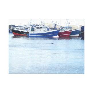 Sälar på den Howth hamnen i Dublin Irland Canvastryck