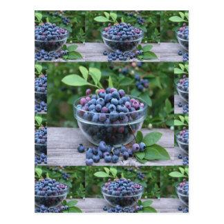 Sallader för frukost för cuisine för blåbärkockar vykort