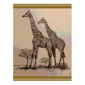 Sällsynta Retro afrikanska giraff i Sepia & Vykort