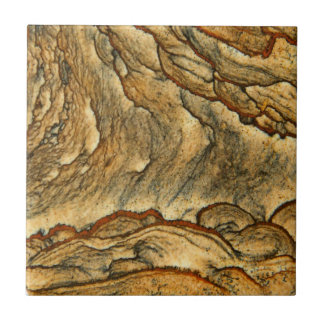 Sällsyntet landskap jaspercloseupen kakelplatta