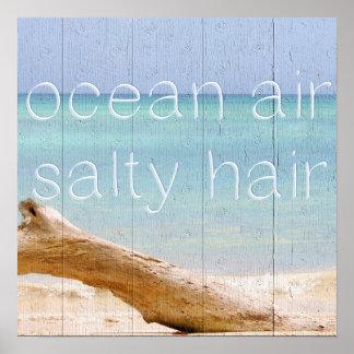 Salt hår för havluft affisch