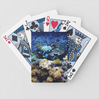 Saltwaterakvariumdäck av att leka kort spelkort