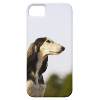 Saluki 2 iPhone 5 Case-Mate skydd