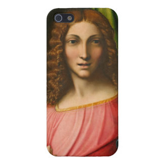 Salvator Mundi, C. 1515 (olja på panel) iPhone 5 Cover