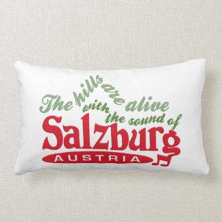 Salzburg dekorativ kudde