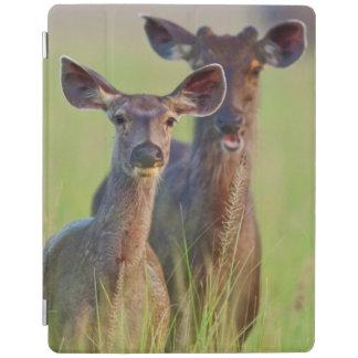 SambarDeers i ängarna, Corbett nationalpark iPad Skydd