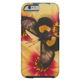 Sammamish Washington fotograferar av fjäril 39 Tough iPhone 6 Case