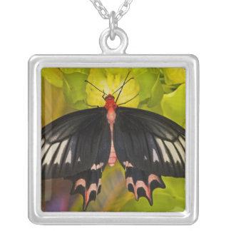 Sammamish Washington. Tropiska fjärilar 9 Silverpläterat Halsband