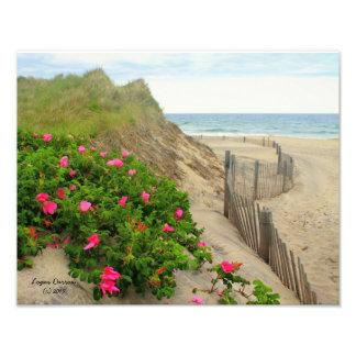 Sand dyner och sätta på land ön för ro~-kvarteret, fototryck