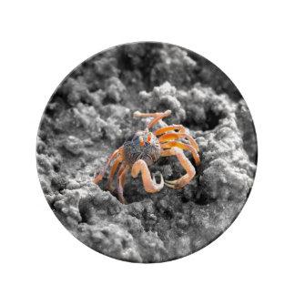 Sandbubblerkrabba Porslinstallrik