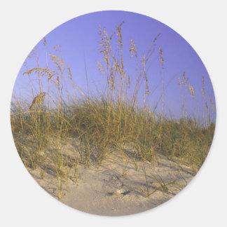 Sanddyn Runt Klistermärke