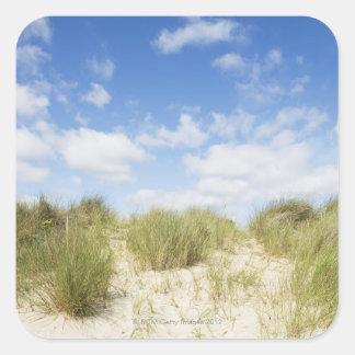 Sanddyner Fyrkantigt Klistermärke