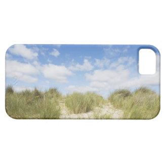 Sanddyner iPhone 5 Case-Mate Cases