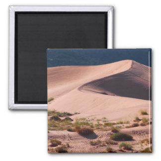 sanddyner magnet