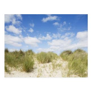 Sanddyner Vykort