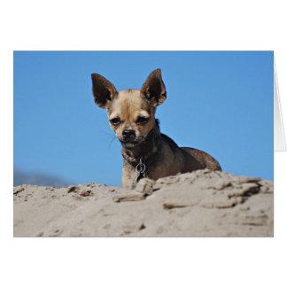 Sanddynerna Hälsningskort