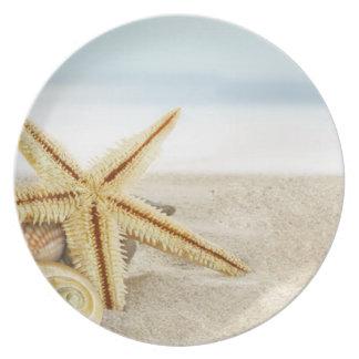 Sandiga strandsjöstjärnasnäckskal tallrik