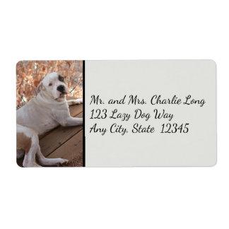 Sändningsetiketter för oemotståndlig farstubrohund fraktsedel