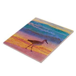 sandpiper på strand på solnedgången kakelplatta