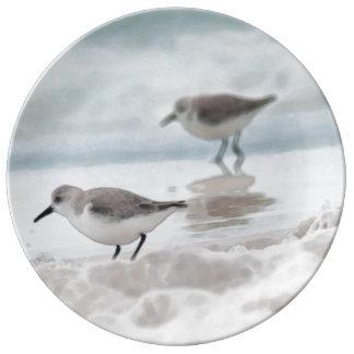 Sandpipers på strand porslinstallrik