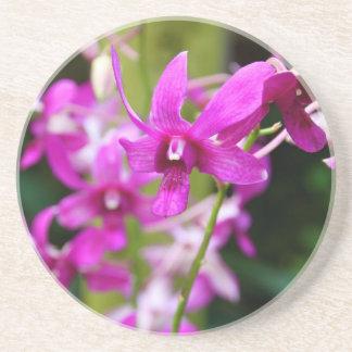 Sandstenkustfartyg - Cooktown Orchid Underlägg