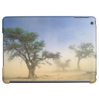 Sandstorm i den Kalahari öknen, Kgalagadi