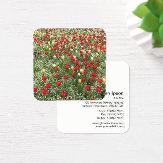 Sängen av tulpan och annan blommar fyrkantigt visitkort